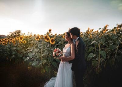 Sposi girasoli